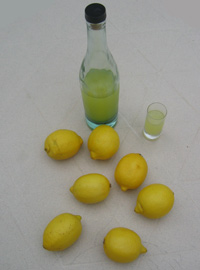http://www.toquentete.net/style/photo/limoncello_med.jpg